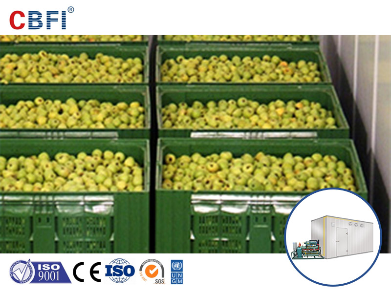 Cold Chain Logistics Market and Cold Storage Room